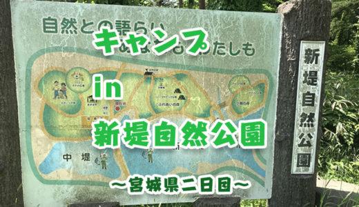 【宮城県】新堤自然公園キャンプ場でテント泊!【無料キャンプ場】