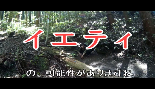【登山初心者】鋸山に挑戦! part3【スタミナ枯渇】