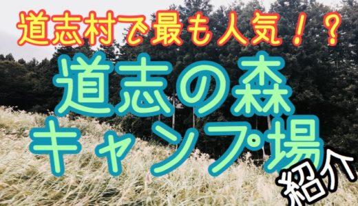 【予約不要】道志の森キャンプ場紹介&レビュー【プールもあるよ!】